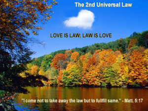 Love_Is_Law